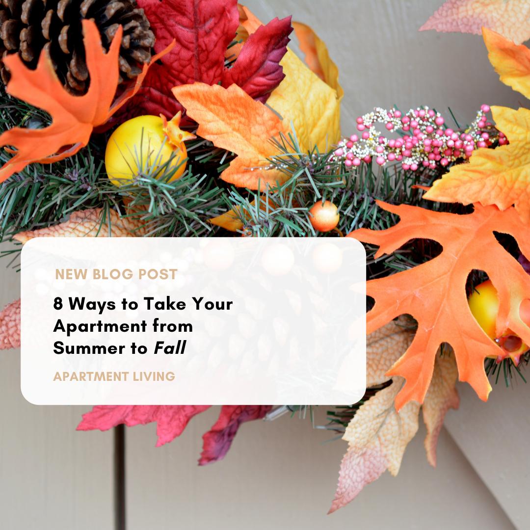 Apartment Living Blog Post