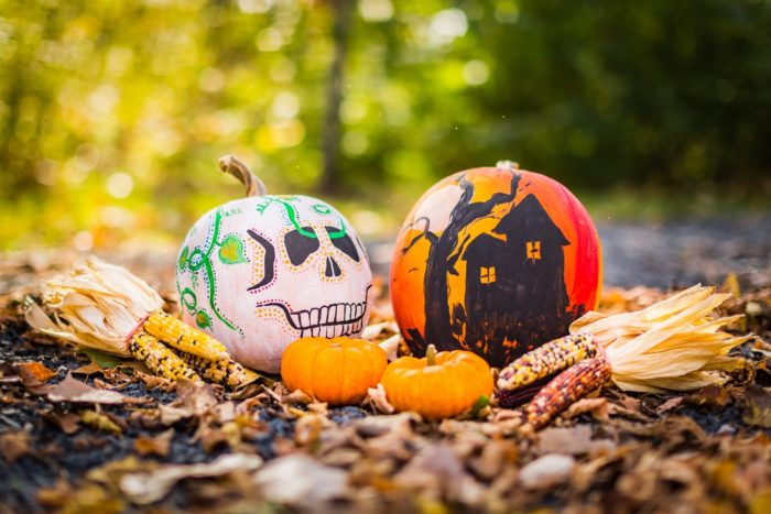 Painted Pumpkins for Halloween resident events.