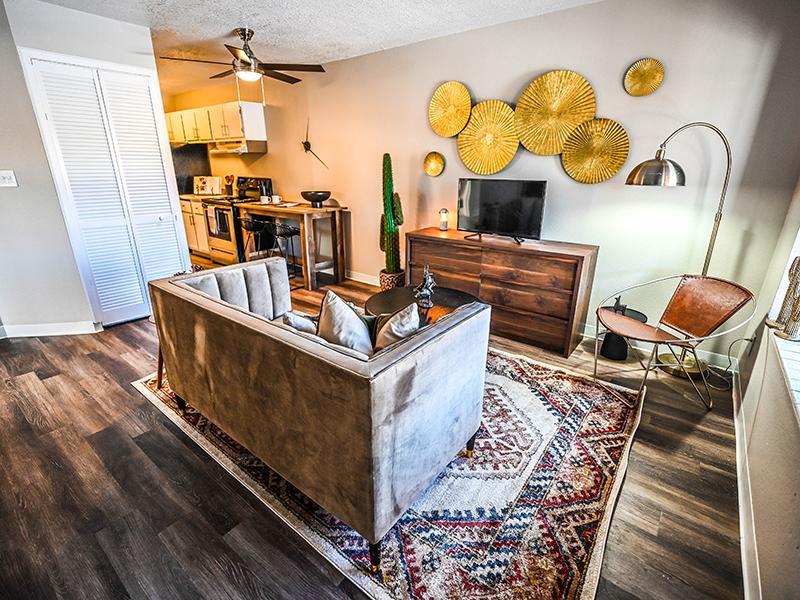Living Room   Dakota Canyon Santa Fe Apartments
