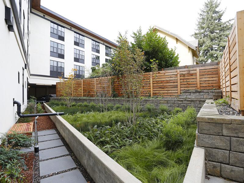 Fence and Foliage | Northwood