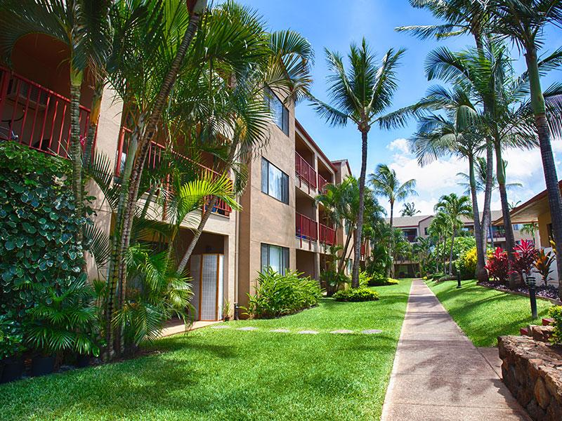 Sunset Terrace Apartments Hawaii Lahaina