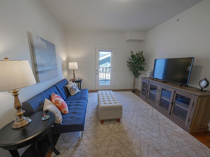 Living Room  | Remington Apartments in Helena, MT