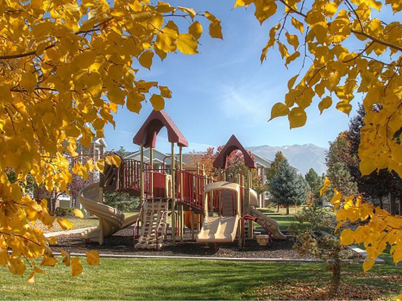 Playground   Hidden Cove
