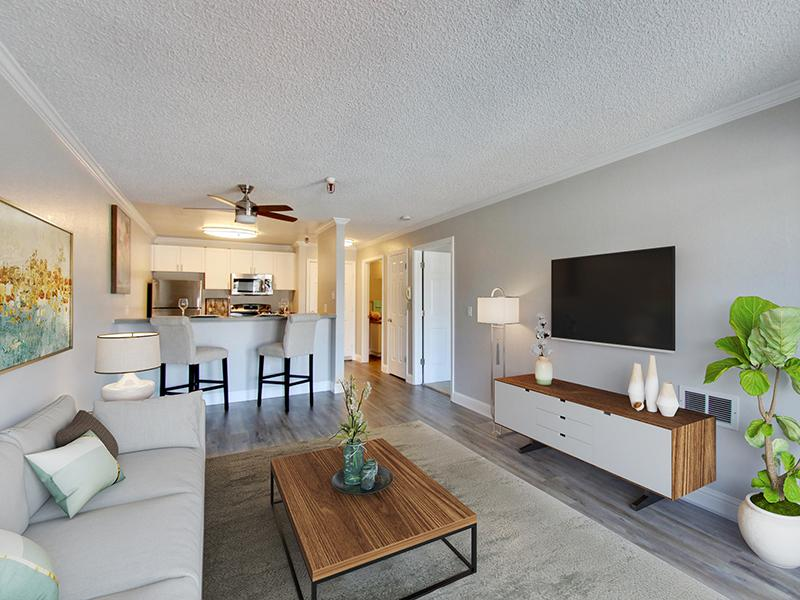 Staged Living Room | Coral Court