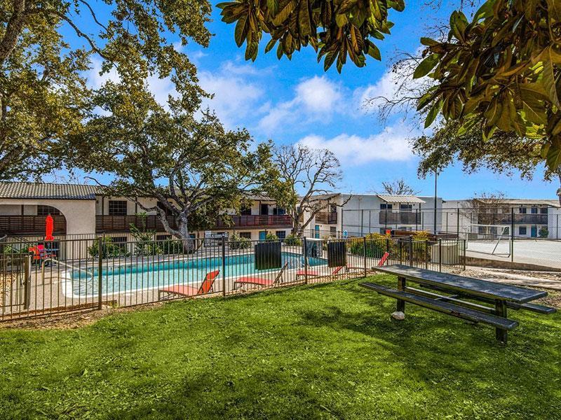 Sky Vue | Beautiful Pool View | Apartment San Antonio