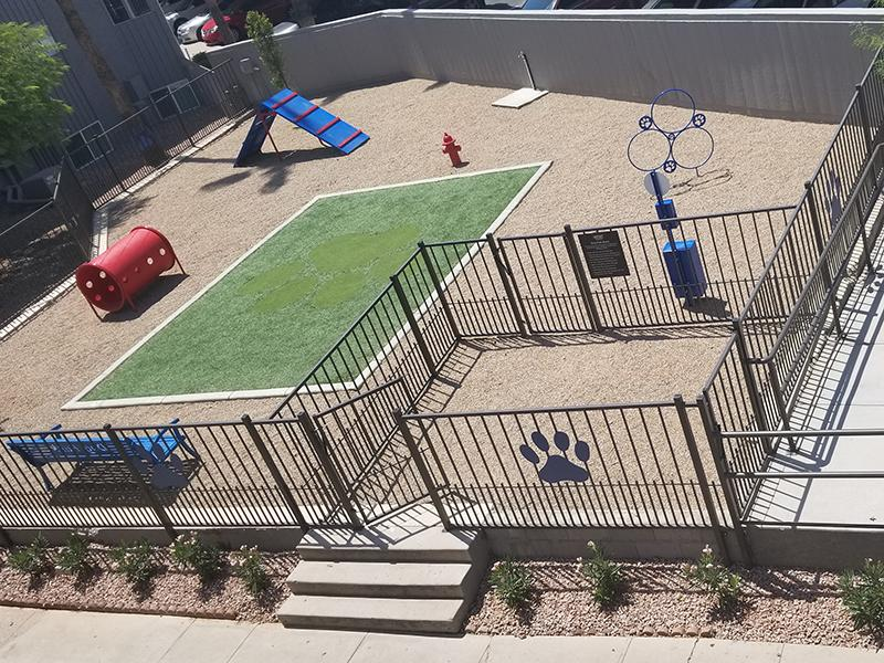 Dog Park | The District Fiesta Park Apartments in Mesa, AZ