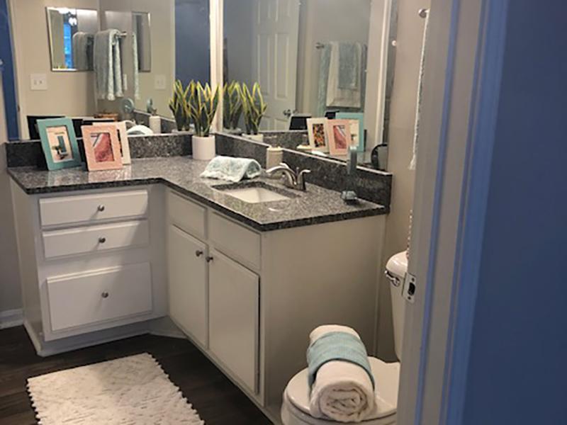 Deluxe Bathroom | Shadow Ridge