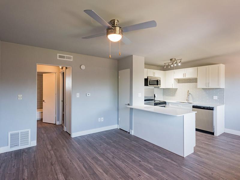 The Joshua Tree Apartments In Salt Lake City Ut