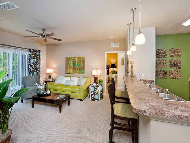 Open Living Room | The Park at Southwood Apartments Tallahassee