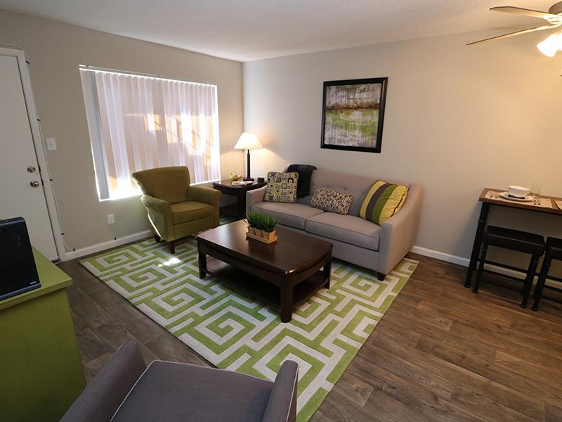 Living Room | Dakota Canyon Santa Fe Apartments