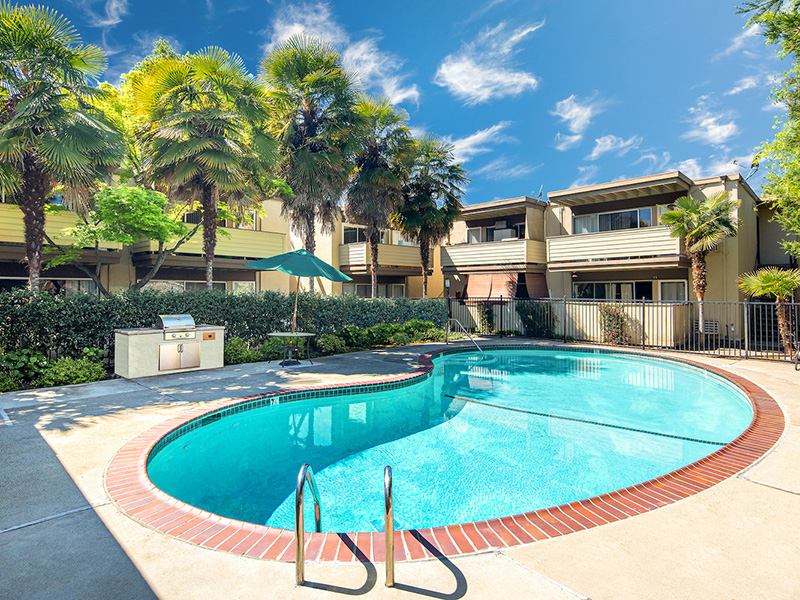 Swimming Pool | Enclave Apartments in Walnut Creek, CA