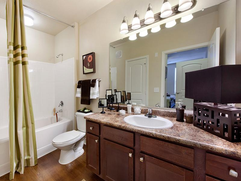 Master Bathroom | The Park at Southwood Apartments