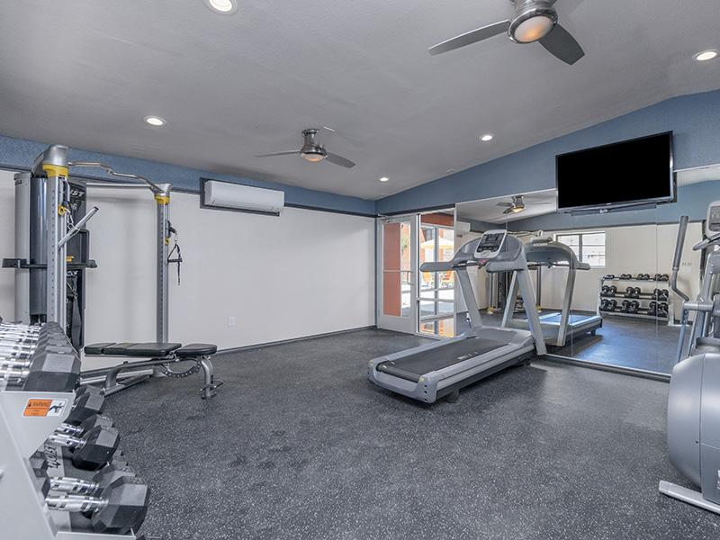 Gym | Aria on Mill