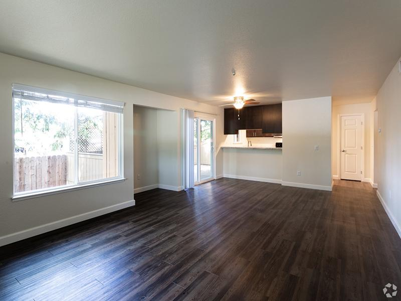 Living Room | Spring Club Apartments | 1x1