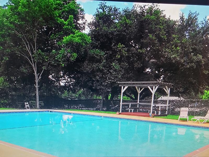 Swimming Pool | Brick Maze Apartments in Nacogdoches, TX
