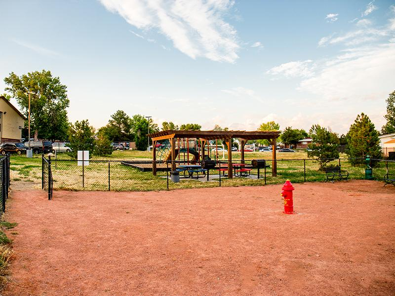 Dog Park | Timber Lodge in Thornton