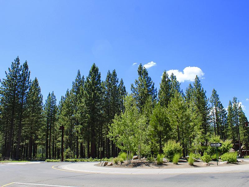 Coburn Crossing Community Landscapes