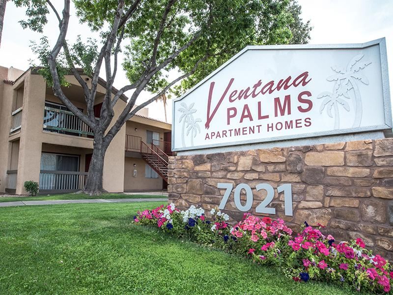 Ventana Palms Apartments in Tempe, AZ